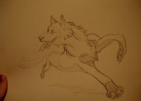 .:Sketch - Running Wolf:. by 25Nanao16