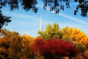 Fall colors at The Forks in Winnipeg Manitoba by Joe-Lynn-Design