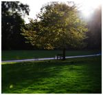 London park by cocca90