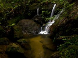 Fairyland by FireflyPhotosAust