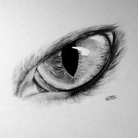 Realistic Cat Eye Drawing by LethalChris