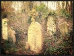 Highgate Cemetery North London 2 by Jami-Deni