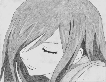 Erza by D-912