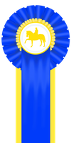 1st-3 Day Event-IDS-Dressage by patchesofheaven74