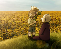 TS - Sunflower Field by Gav-Imp