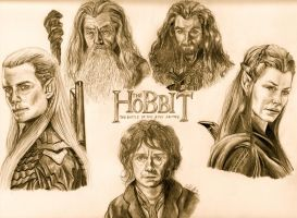 The Hobbit: The Battle of the Five Armies by BoyWonder024