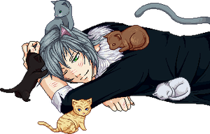 Tsubaki and cats by MeiMiesa