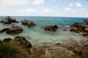Bermuda 115 by FairieGoodMother