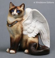 Burmese Winged cat by Reptangle