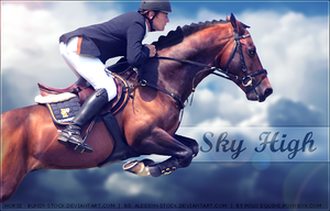 Sky High [Horse Picture] by poloart-pb