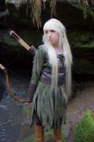 Mirkwood Elf 7 by Liancary-art