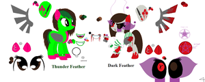 thunder feather\dark feather ref sheet (update) by thorad11
