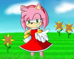 Amy Rose by NegiCake