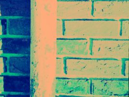 Cross Processing - 2 by Dreams-Made-Flesh