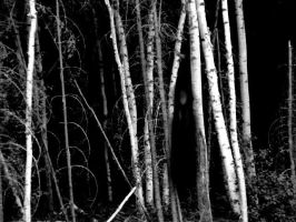 Slenderman in my backyard by Cageyshick05