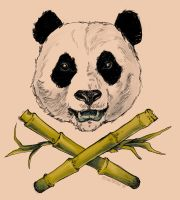 Panda Flash by blindthistle
