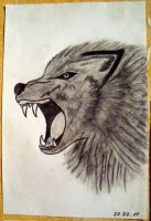 wolf by djulss
