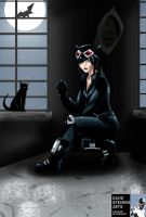 Catwoman by DStevensArt