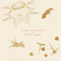 BIRD VINTAGE TEXTURE PACK by Kolede