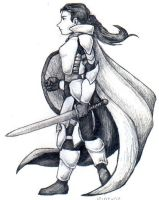 Lady Knight by sincerely