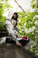 AC Brotherhood-Ezio Cosplay 11 by LadyBad