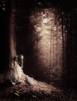 Forest Enchantment by Jas0nCola