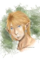 Link by Shii7
