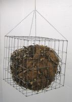 Caged Life Withers 2 by Metalsmith75
