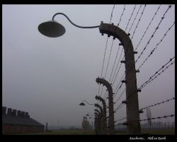 Auschwitz Hell on Earth by linkin1988