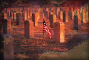 Veterans Day by Chrippy