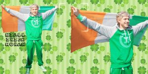 Niall Irish Horan header by pompasdecolores