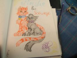 Firestar and Scourge! by xX-DarkPrincess-Xx