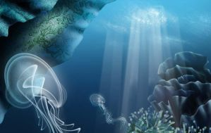 jellyfish at coral reef by troody