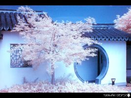 Chinese Garden IR by shadowfoxcreative