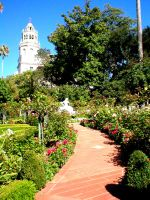 hearst castle--- the path. by kitty1613