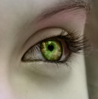 Nature's Eye by xBeautifulDreamerx