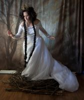 bird 6 by magikstock