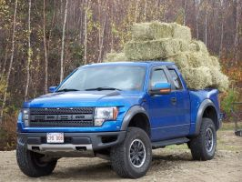 1 Raptor, 2 girls and 28 bales of hay... by Cainamoon