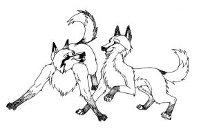 Two Foxes Playing by jjferrit