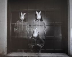 Three rabbits 1 by boisvemi