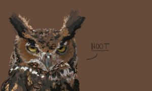 HOOT wallpaper by Ningeko16
