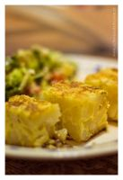 Spanish Omelette by ElkeF