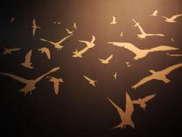 Bird Silhouettes by Dragoroth-stock