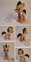 Dr. Whooves Custom by Colour-Splashes