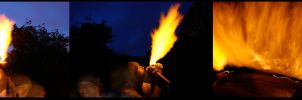 playing with fire by dowdall