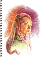 Tauriel by maya-Notliketheother