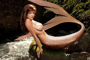 mermaid tf the video who change the worlg pg5 end by tsilver