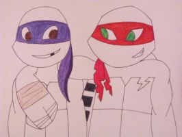 Raph and Donnie by astral26