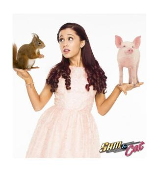 Pigs or Squirrels? by Ask--CatValentine