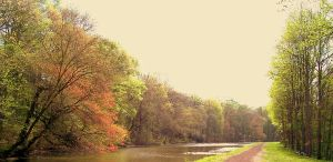 delaware canal, SE PA by grizzy898